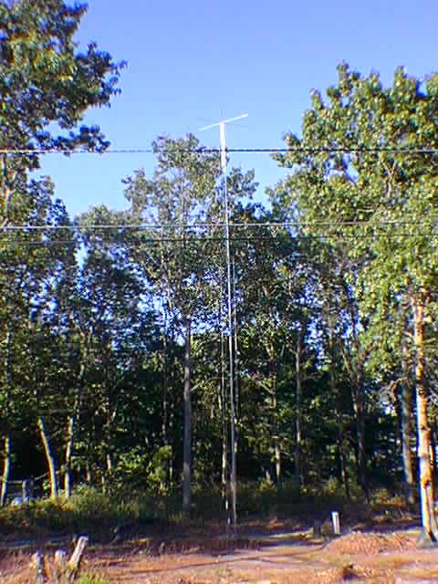 top hat vertical antenna.